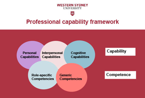 Figure Two - Professional Capability Framework