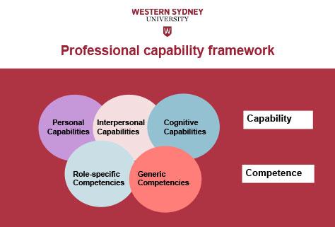 Figure Two - Professional Capability Framework